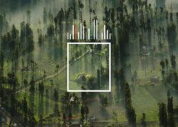 MemSQL Data Photograph